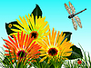 Vector clipart: dragonfly and flowers card