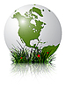Vector clipart: earth globe and grass reflected