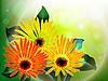 Векторный клипарт: цветочная открытка