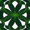Vector clipart: green seamless design