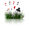 four aces behind grass