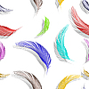 Vector clipart: feathers seamless texture