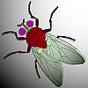 Vector clipart: fly