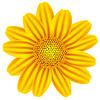 Векторный клипарт: желтые ромашки