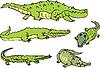 Набор комических аллигаторов и крокодилов забавных