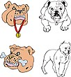 Bulldog cartoons | Stock Vector Graphics