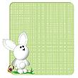 Photo 300 DPI: bunny