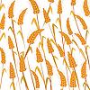 Векторный клипарт: Спелая пшеница
