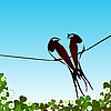 Vector clipart: Swallows background