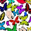 Фото 300 DPI: Бабочки