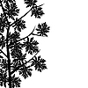 Vector clipart: Maple leaf border