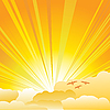 Vector clipart: Sunburst