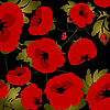 Vector clipart: Poppies