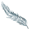 Feather | Stock Vector Graphics