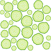 Vector clipart: Cucumber slices
