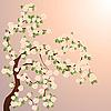 Photo 300 DPI: Blooming tree