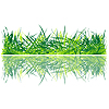 Vector clipart: Fresh grass