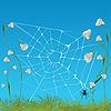 Векторный клипарт: паук с паутиной на цветах