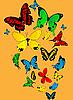 Vector clipart: Color butterflies