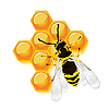 Wasp and honeycomb | Stock Vector Graphics