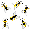Vector clipart: wasps