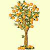 Векторный клипарт: Оранжевое дерево