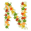 Vector clipart: Autumn floral letter N