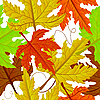 Vector clipart: seamless autumn leaves