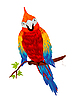 Vector clipart: parrot