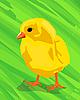 Векторный клипарт: цыпленок