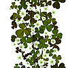 Clover leaves and flowers seamless pattern
