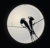 Векторный клипарт: Птицы на проводе