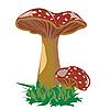 Vector clipart: Mushroom family