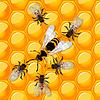 Векторный клипарт: Пчелы и осы