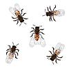 Векторный клипарт: Рабочие пчелы