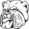 Vector clipart: bulldog tattoo