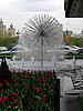 Dandelion fountain | Stock Foto