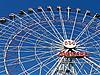 轮 | 免版税照片