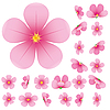 Vector clipart: sakura flower