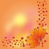 Vector clipart: autumn background with maple leaves