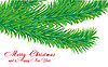 Vector clipart: Christmas card with fir branch