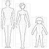 Vector clipart: human body proportions