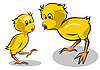 Vector clipart: chickens