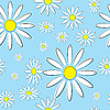 Vector clipart: Seamless illustration of flowers daisies on blue background