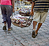 Fishermen with basket of fish | Stock Foto