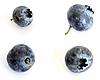 ID 3016499 | Süße Heidelbeeren | Foto mit hoher Auflösung | CLIPARTO