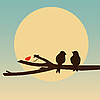 Birds on branch  | Stock Illustration