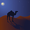 Camel in the night | Stock Illustration