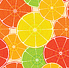 Vector clipart: citrus high-detailed background. Seamless.