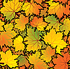 Vector clipart: Maple leaves abstract background
